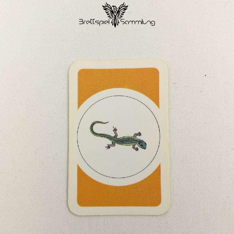Das Verrückte Labyrinth Geheimniskarte Motiv Salamander #2