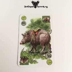 Elfenland Reisekarte Riesenschwein