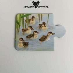 Tiere Und Ihre Kinder Kartenhälfte Entenküken