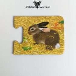 Tiere Und Ihre Kinder Kartenhälfte Kaninchen