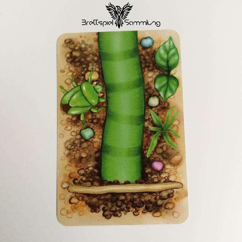 Streifen Toni Karte Wurmteil Grün #1