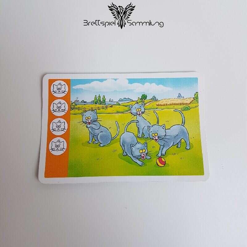 Kuh Und Co Tierkarte 4 Motiv #11