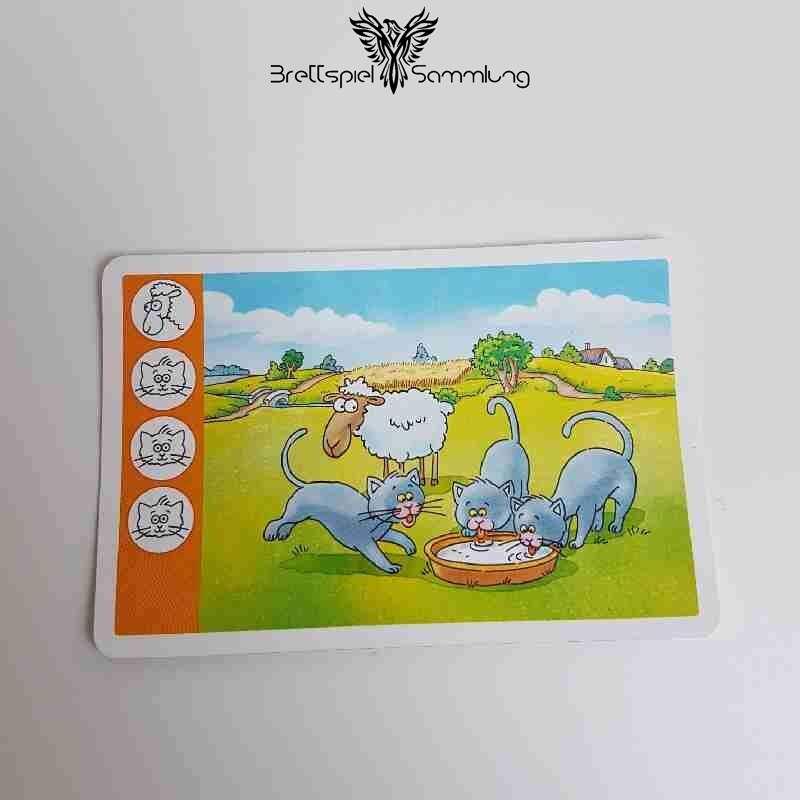 Kuh Und Co Tierkarte 4 Motiv #13