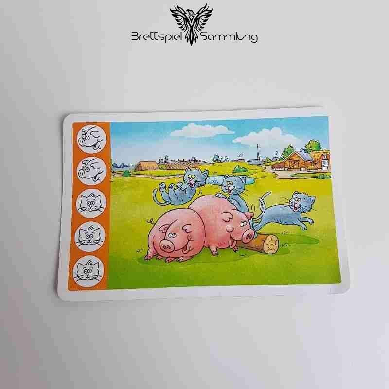 Kuh Und Co Tierkarte 5 Motiv #2