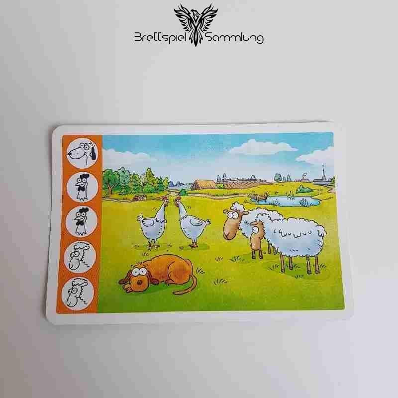 Kuh Und Co Tierkarte 5 Motiv #6