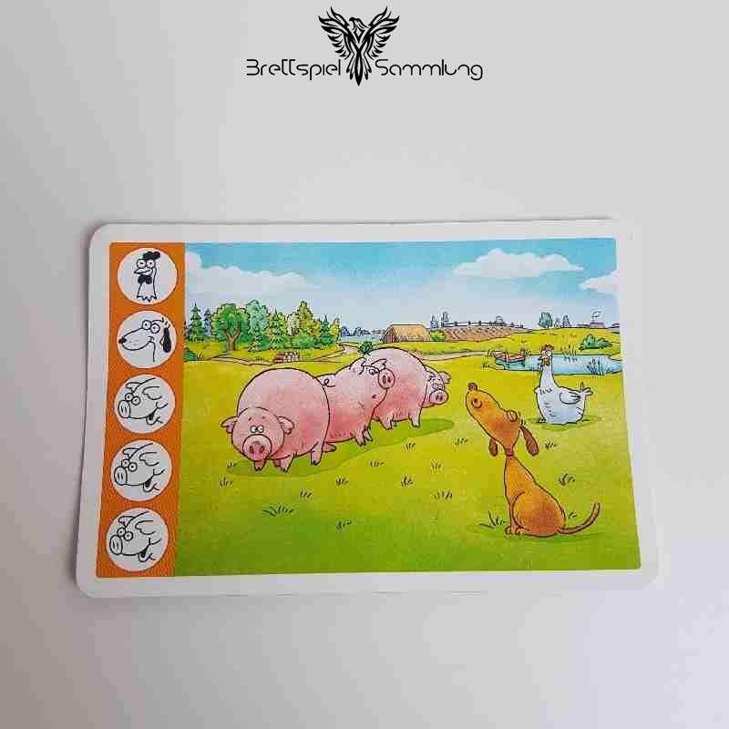 Kuh Und Co Tierkarte 5 Motiv #8